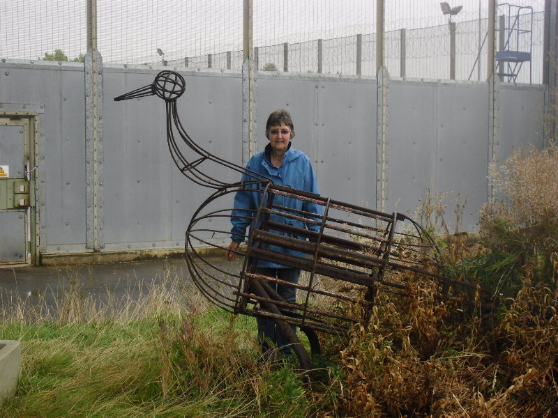 Discovery of the Peacock at HMP Ashwell