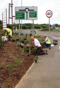 Planting & Weeding on Lands End Way