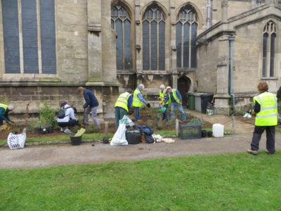 Volunteers plant All Saints Memorial Garden